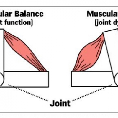 Structural Balance Screening